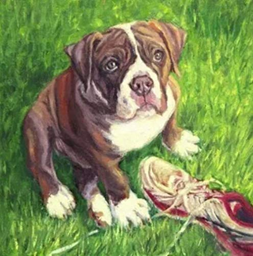 Yxsnow 5D DIY Pintura Diamante Animal bulldog inglés marrón y un zapato en la hierba 5D Punto de Cruz Diamante, Redondo Rhinestone Mosaico decoración manualidades 16x20 pulgada
