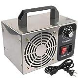 LALEO Generador De Ozono Máquina De Ozono Purificador De Aire De Acero Inoxidable Limpiador De Aire Esterilización Limpieza Formaldehído 10G 220V