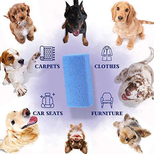Moxler Pumice Stone Pet Hair Removal Tool for Car Seat Mat Couch Bed Carpet Rug Floor Furniture Reusable Animal Fur Remover Cat Dog Hair Cleaner