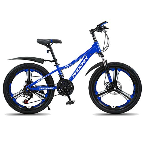 Axdwfd Kids Bike Children's Bicycle 20 Inch Boys and Girls Cycling, Suitable for Children 9-14 Years Old, Black, Blue Bicycle (Color : Blue)