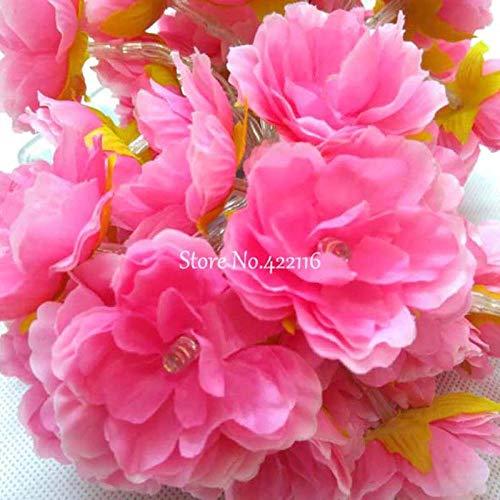 Luces led Yuan Ou10m 20m 30m 50m Flor de seda LED Cadena...