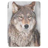 RECASO1つ 耳 背部を持つオオカミ(イヌ属ループス) iPad 7 ケース 第7世代 PUレザー 2019 10.2インチ 透明 TPU 耐衝撃 背面保護ケース apple アイパッド カバー
