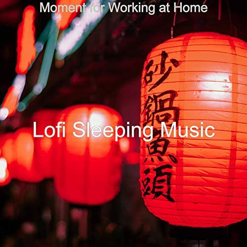 Lofi Sleeping Music
