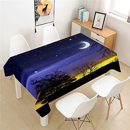 XXDD Hermoso Mantel de Noche Mesa de Picnic Rectangular luz Cubierta de Mesa de Comedor de Lujo Lavable Mantel de decoración de Mesa para el hogar A4 150X210CM