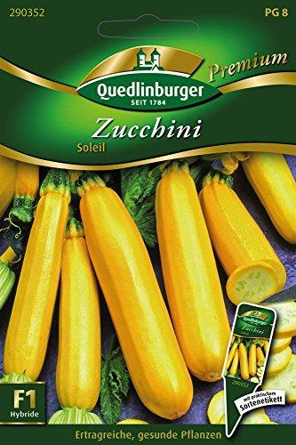 Zucchini Soleil von Quedlinburger Saatgut