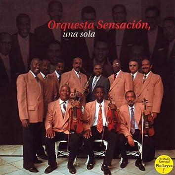Orquesta Sensación, Una Sola. The Great Orquesta Sensacion.