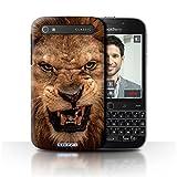 Hülle Für BlackBerry Classic/Q20 Wilde Tiere Löwe Design