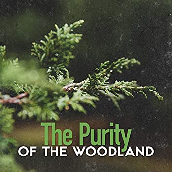 The Purity of the Woodland