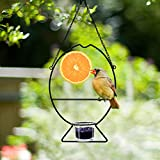 7. Prsildan Metal Hanging Oriole Bird Feeder with Fruit Holder Removable Drink Glass for Garden Patio Trunk Outside