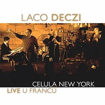 Live U Franců