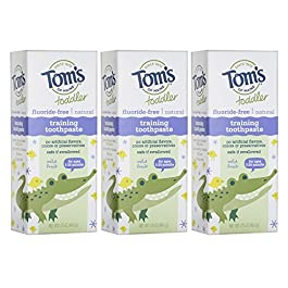 Tom's of Maine Toddlers Fluoride-Free Natural Toothpaste in Gel