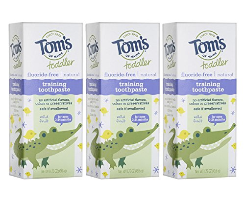 Tom's of Maine Toddlers Fluoride-Free Natural Toothpaste in Gel, Mild Fruit, 1.75 Ounce, 3 Count (B00T69D4WM)
