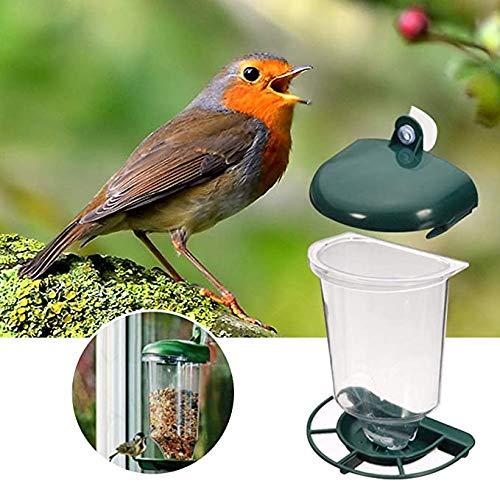 Zaad feeder vogelvoeder doorzichtige plastic bekers automatische tuin wilde vogels