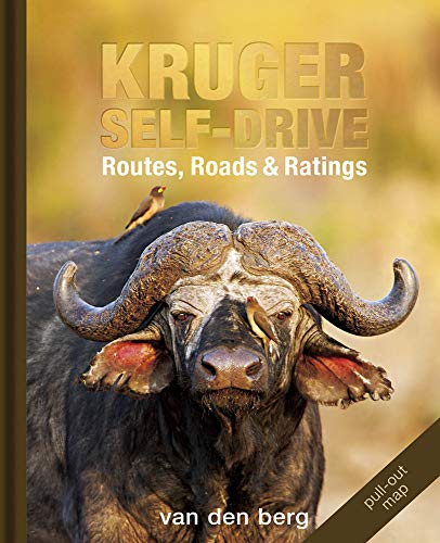 Kruger Self-drive: Routes, Roads & Ratings