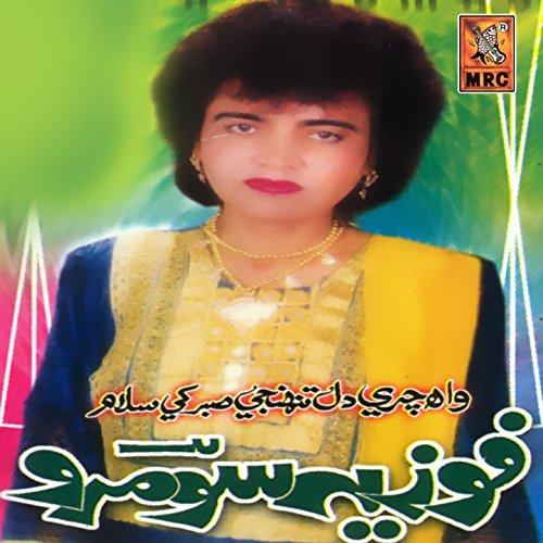 Dil Munjhi Wayin Piyo Bariyo