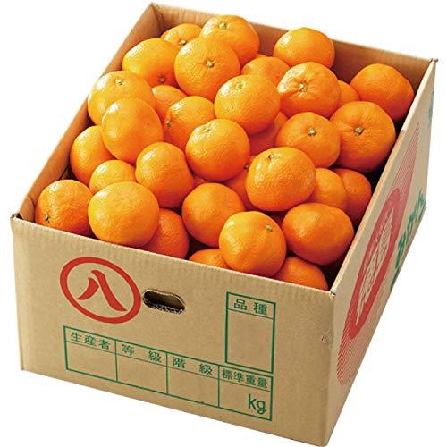 みかん 温州みかん 産地厳選 風のいたずら 訳あり 大きさおまかせ 9kg 蜜柑 ミカン