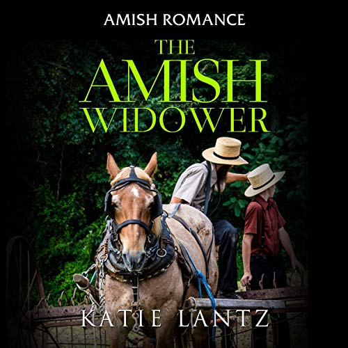 The Amish Widower audiobook cover art