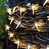 Dragonfly Solar String Lights Outdoor,AMZSTAR 19.7ft 8Modes 30 LED Waterproof Fairy Lights for Indoor/Outdoor Home Garden Lawn Fence Patio Party and Holiday Decorations (Warm White)