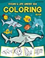 Ocean Coloring Book for Kids: Life Under Sea Ocean Coloring Book, Ocean Animal Books for Kids, Kids Coloring Book, Activity Book for Kids, Coloring Books for Kids Ages 2-4 4-8