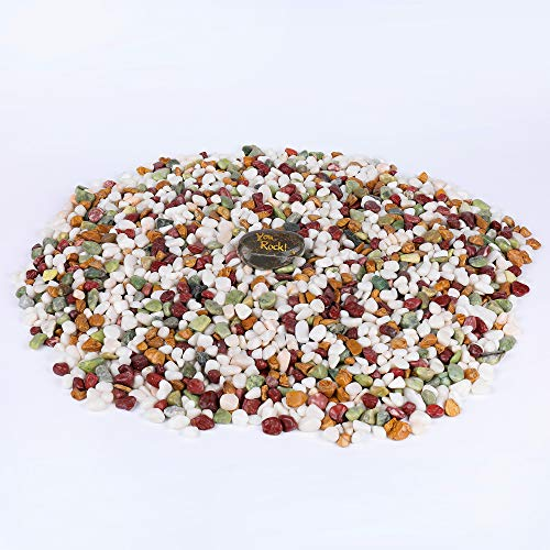 ROCKIMPACT 19 lbs. Landscaping Rocks, Highly Polished Garden Decorative Stones, Succulent Rocks, Pebbles for Bonsai Plant Pot, Lucky Bamboo, Kids Crafts, Aquarium, Terrarium Rocks (Bright Mix, 3/4')