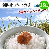 新潟米コシヒカリ【白米】15kg[新潟産こしひかり]