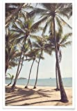 "JUNIQE® Strände Palmen Poster 20x30cm - Design ""Palm"