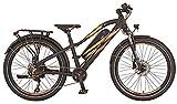 Prophete Unisex Jugend Graveler eSUV 20.ESS.10 E-Bike 24' BLAUPUNKT HR-Motor, schwarz, RH 34