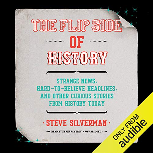 The Flip Side of History cover art