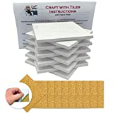 Coaster Tile Craft Kit, Set of 10 Glossy Ceramic White Tiles 4x4, w/ Detailed Instructions Plus Tips and Tricks, DIY Make Your Own Coasters, Mosaics, Painting Projects, Decoupage, Alcohol Ink