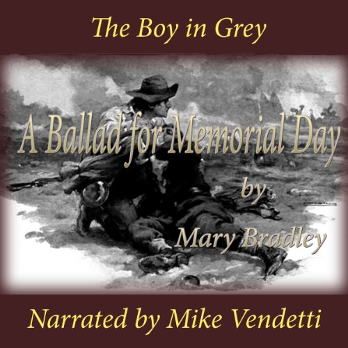 The Boy in Grey audiobook cover art