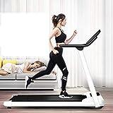 Spin Bike - Cinta de correr plegable, cinta de correr eléctrica para fitness, pérdida de peso, aparatos de ejercicio en interiores, modelo ultra ruidoso, BJY969