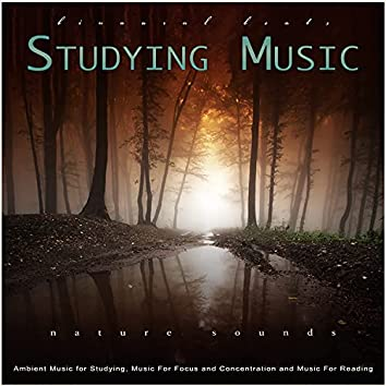Studying Music: Binaural Beats, Ambient Music and Nature Sounds for Studying, Music For Focus and Concentration and Music For Reading, Relaxation and Study Music