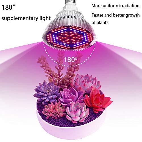 ALQFFHL Lámparas de crecimiento