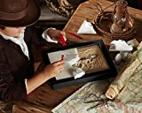 FAO Schwarz Toy Dinosaur 3D Fossil Skeleton Excavation Kit, Includes 15 Pc T-Rex/10 Pc Velociraptor Replica Puzzle Bones, Tool Kit W/ Hammer, Chisel, and Brush, an Educational STEM Gift for Ch