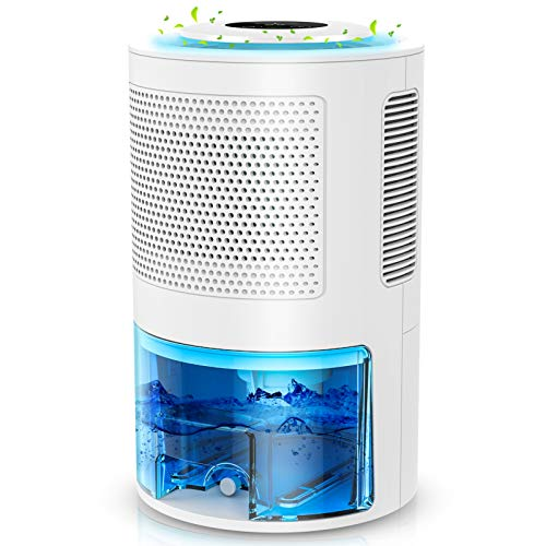 LONOVE Dehumidifiers - 70 oz(2000ml) Portable and Ultra Quiet Dehumidifier with Drain Hose for 5000 Cubic Feet (450 sqft) Small Dehumidifiers for Home Basements Bedroom Bathroom Room Closet RV