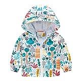 LINSINCH Manteau pour Bébés Filles Garçons 0-36 Mois Hiver Vestes Rembourrées à Capuche Coupe-Vent Vêtements d'extérieur Manches Longues Hauts pour Enfants