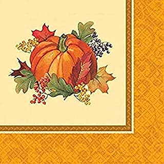 Bountiful Thanksgiving Multicolored Dinner Paper Napkins, 16 Ct. | Party Tableware