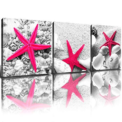 Shell Wall Decor Gray Seashell Canvas Bathroom Painting Art Ocean Dark Pink Starfish Prints Pictures Home Decoration Modern Marine life Beach Theme Artwork Poster Framed Ready to Hang 12x12' 3 Panels