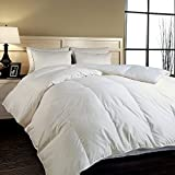 Naples 700 Thread Count Cotton Hungarian White Goose Down Comforter - Twin