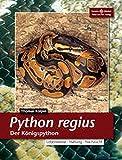 *Python regius. Der Königspython