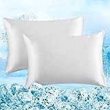 Elegear Ari-Chill 2 Pezzi Federe in Fibra di Seta Giapponese a Raffreddamento Naturale, Tessuto Ipoallergenico e Traspirante Indicato per la Cura dei Capelli e della Pelle (Bianca, 50x75cm)