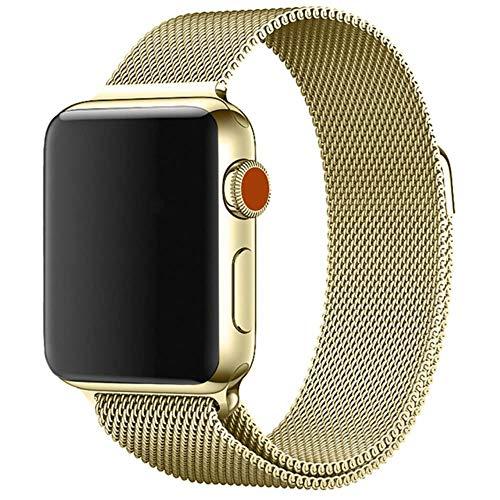 WeiYun Pulsera de Acero Inoxidable para Apple Muestra el Soporte metálico para Smart PM,Oro