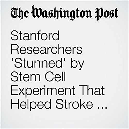 Stanford Researchers 'Stunned' by Stem Cell Experiment That Helped Stroke Patient Walk audiobook cover art