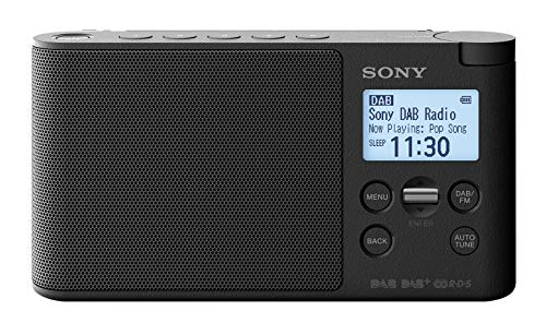 Sony XDR-S41D Digitalradio Bild