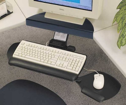Workrite 2112-22 Keyboard w/Dual Mouse- Pinnacle 2 budget arm + Syn. Leather Wrist Rest