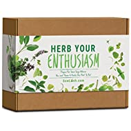Enthusiasm Delicious Varieties Packed Flavour