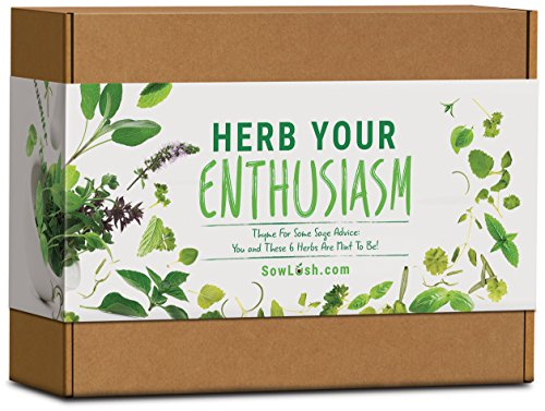 Sow Lush Herb Your Enthusiasm, Kit Regalo con Semi, 6...