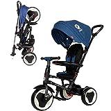 QPLAY Tricycle Evolutif Pliable Rito - Bleu – Bébés de 10 Jusqu'à 36 Mois – Poids supportable Jusqu'à 25 Kg