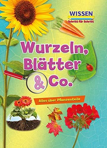 Wurzeln, Blätter & Co.: Wissen - Schritt für Schritt (CORONA Sachbücher)