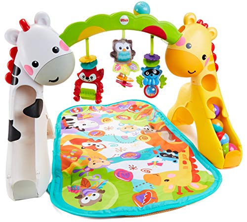 Newborn-to-Toddler Play Gym